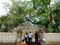 Anuradhapura-00869
