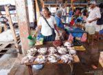 Negombo_village-04300