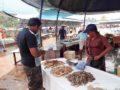 Negombo_village-05063