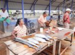 Negombo_village-05075