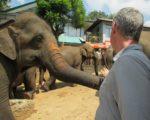 Sri_lanka_pinnawalaIMG_2349