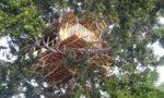 sri_lanka_trael_partner_tree_house_camping_12