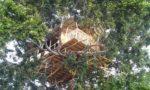 sri_lanka_trael_partner_tree_house_camping_8