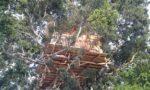 sri_lanka_trael_partner_tree_house_camping_9