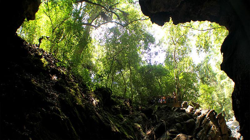 Wavulpone Cave