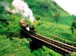 Charcoal train Sri Lanka
