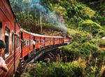 Sri lanka Train Tours75